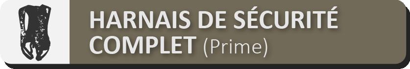SÉCURITÉ DU HARNAIS CORPOREL COMPLET