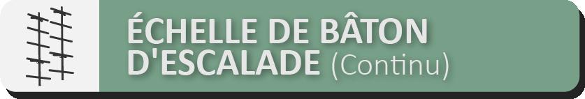 SÉCURITÉ DE L'ÉCHELLE EN BOIS