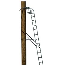 Jaw Ladder Stand Safety Glossary